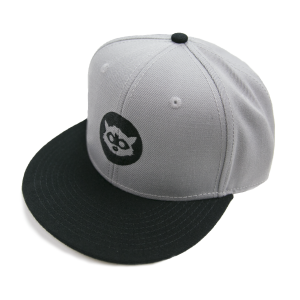 the-logo-snapback-grey