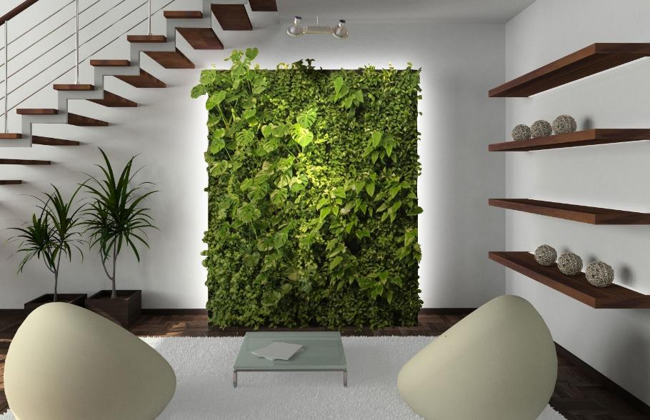 monitor, plant monitor