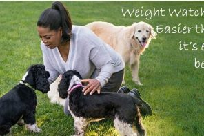 Will Weight Watchers Work for You?